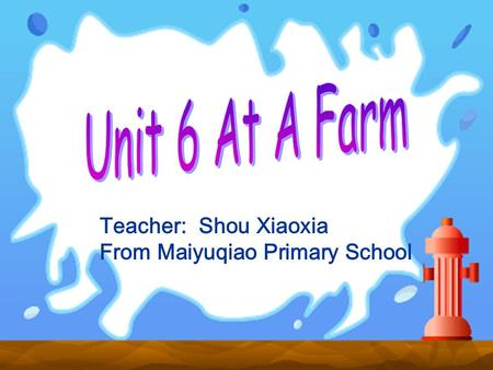 Teacher: Shou Xiaoxia From Maiyuqiao Primary School.