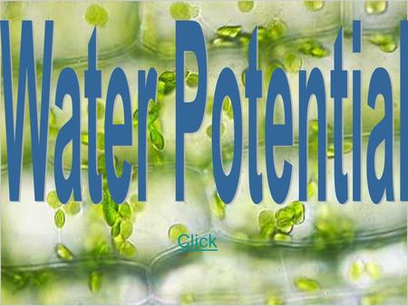 Click. Water potential Water potential is a concept that helps to describe the tendency of water to move from one area to another, particularly into or.