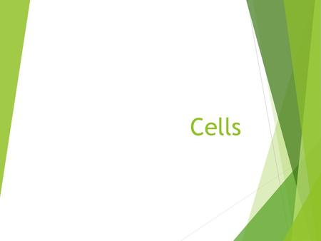Cells. Definitions  Cell – the smallest unit of a living organism; surrounded by a thin membrane  Unicellular – an organism consisting of only one cell.