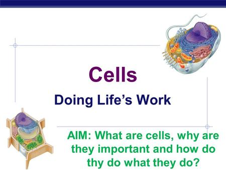 AP Biology Cells Doing Life's Work AIM: What are cells, why are they important and how do thy do what they do?