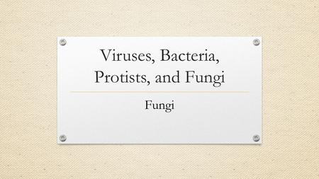 Viruses, Bacteria, Protists, and Fungi Fungi. What Are the Characteristics of Fungi? Most fungi share several important characteristics. Fungi are eukaryotes.