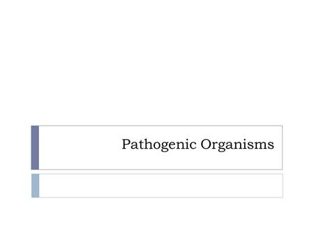 Pathogenic Organisms. Types of Pathogens  There are 5 different types of pathogens. organisms that cause disease Pathogens – organisms that cause disease.