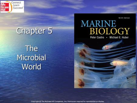Chapter 5 The Microbial World Copyright © The McGraw-Hill Companies, Inc. Permission required for reproduction or display.