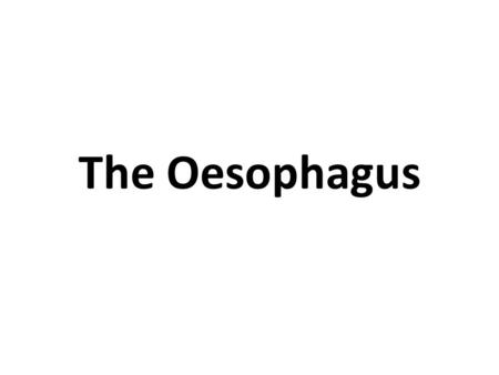The Oesophagus. How does food get to the stomach?
