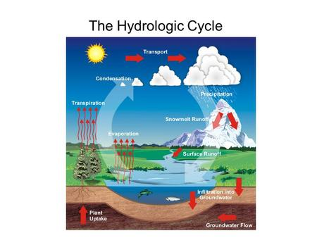 The Hydrologic Cycle. Salt water vs. fresh water In this class, we will be mostly Concerned with fresh water (terrestrial).