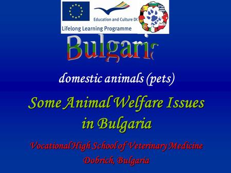 Domestic animals (pets) Some Animal Welfare Issues in Bulgaria Vocational High School of Veterinary Medicine Dobrich, Bulgaria.