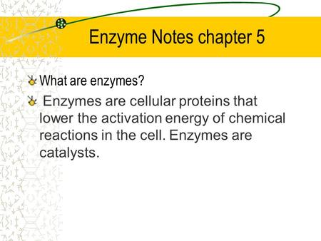 Enzyme Notes chapter 5 What are enzymes? Enzymes are cellular proteins that lower the activation energy of chemical reactions in the cell. Enzymes are.