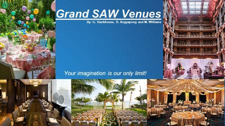 Grand SAW Venues By: G. Stackhouse, B. Angyapong and M. Williams Your imagination is our only limit!