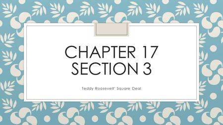 CHAPTER 17 SECTION 3 Teddy Roosevelt' Square Deal.