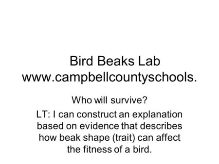 Bird Beaks Lab www.campbellcountyschools. Who will survive? LT: I can construct an explanation based on evidence that describes how beak shape (trait)