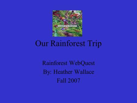 Our Rainforest Trip Rainforest WebQuest By: Heather Wallace Fall 2007.