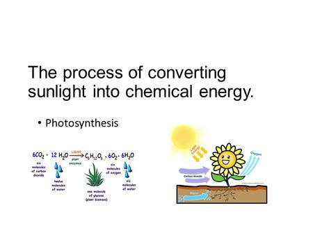 The process of converting sunlight into chemical energy. Photosynthesis.
