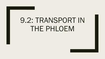 9.2: Transport in the phloem