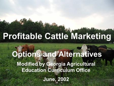 Profitable Cattle Marketing Options and Alternatives Modified by Georgia Agricultural Education Curriculum Office June, 2002.