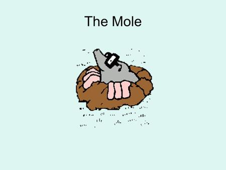 The Mole. Historically, there was no way to know the mass of one atom or molecule WHY?