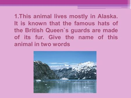 1.This animal lives mostly in Alaska. It is known that the famous hats of the British Queen`s guards are made of its fur. Give the name of this animal.