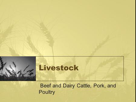 Livestock Beef and Dairy Cattle, Pork, and Poultry.