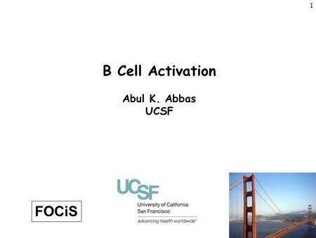 B Cell Activation Abul K. Abbas UCSF FOCiS.