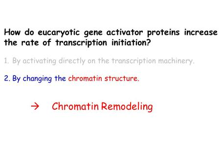 How do eucaryotic gene activator proteins increase the rate of transcription initiation? 1.By activating directly on the transcription machinery. 2.By.