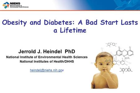 Jerrold J. Heindel PhD National Institute of Environmental Health Sciences National Institutes of Health/DHHS