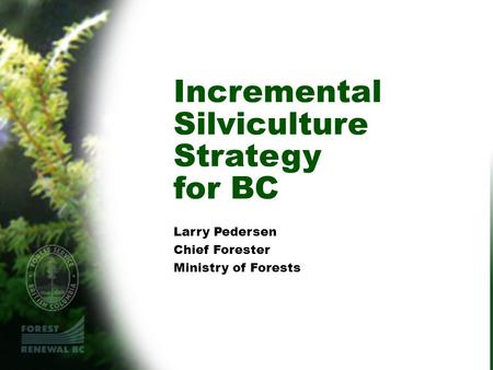 Incremental Silviculture Strategy for BC Larry Pedersen Chief Forester Ministry of Forests.