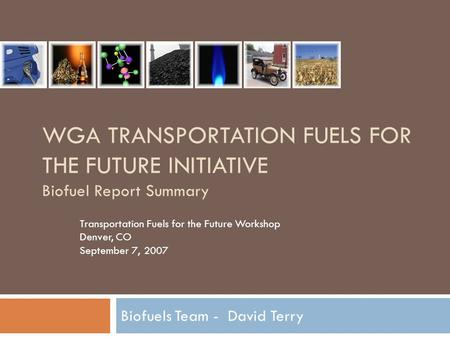 WGA TRANSPORTATION FUELS FOR THE FUTURE INITIATIVE Biofuel Report Summary Biofuels Team - David Terry Transportation Fuels for the Future Workshop Denver,