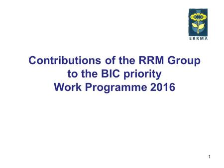 1 Contributions of the RRM Group to the BIC priority Work Programme 2016.