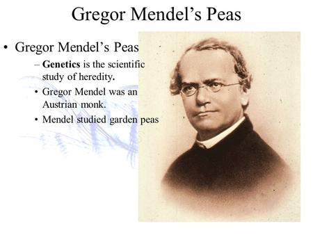 Gregor Mendel's Peas –Genetics is the scientific study of heredity. Gregor Mendel was an Austrian monk. Mendel studied garden peas.