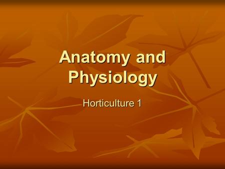 Anatomy and Physiology Horticulture 1. Why are plants important? Food Food Shelter Shelter Oxygen Oxygen Protection Protection Habitat Habitat Aesthetics.