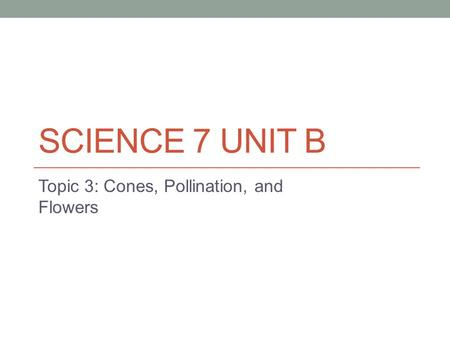 SCIENCE 7 UNIT B Topic 3: Cones, Pollination, and Flowers.