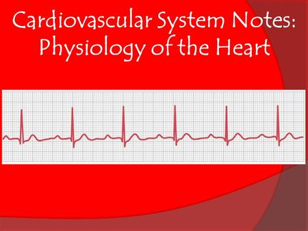 Cardiovascular System Notes: Physiology of the Heart.