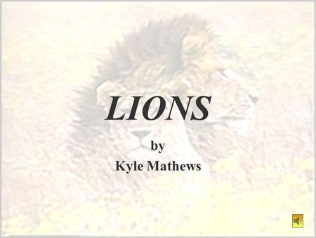 LIONS by Kyle Mathews HABITAT §The only naturally occurring lions are now found in Africa. §Lions do not live in heavy forests or desert areas due to.