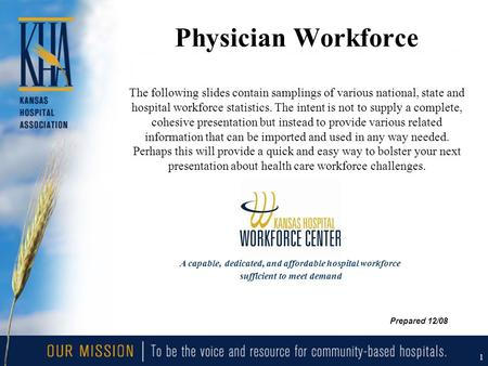 1 Physician Workforce The following slides contain samplings of various national, state and hospital workforce statistics. The intent is not to supply.