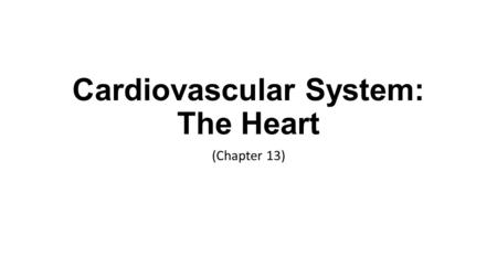 Cardiovascular System: The Heart (Chapter 13). Fun Facts Heart pumps 7,000 liters of blood each day Heart contracts 2.5 billion times in an average lifetime.