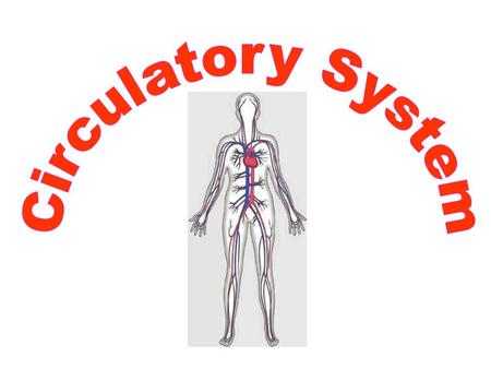Li I know the function, components as well as structure of the circulatory system. I can -Define what the circulatory system is. -I can name the major.