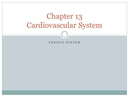 VENOUS SYSTEM Chapter 13 Cardiovascular System. Venous System Returns blood to the heart after blood and body cells exchange gases, nutrients, and wastes.