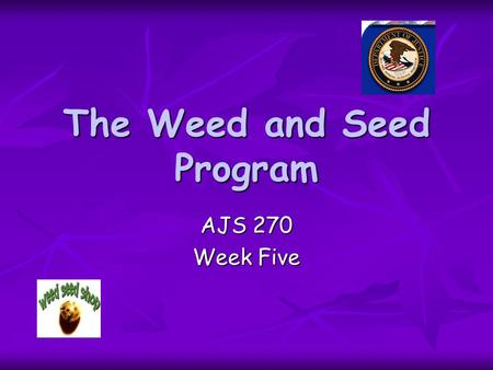 The Weed and Seed Program AJS 270 Week Five. The Beginning Established by the U.S. Department of Justice in 1991. Established by the U.S. Department of.