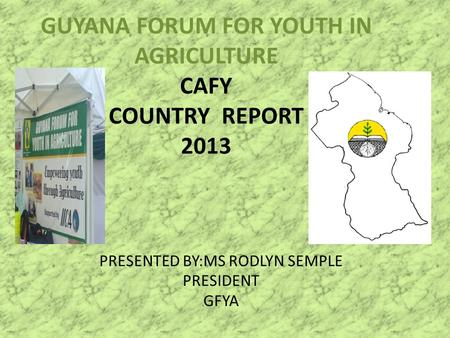 GUYANA FORUM FOR YOUTH IN AGRICULTURE CAFY COUNTRY REPORT 2013 PRESENTED BY:MS RODLYN SEMPLE PRESIDENT GFYA.