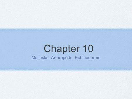 Chapter 10 Mollusks, Arthropods, Echinoderms. Mollusks Characteristics of Mollusks *Invertebrates *Often protected by a hard outer shell *Soft body *Thin.