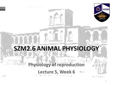 SZM2.6 ANIMAL PHYSIOLOGY Physiology of reproduction Lecture 5, Week 6 1.