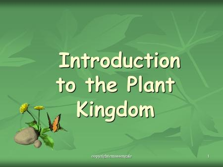 1 Introduction to the Plant Kingdom Introduction to the Plant Kingdom copyright cmassengale.