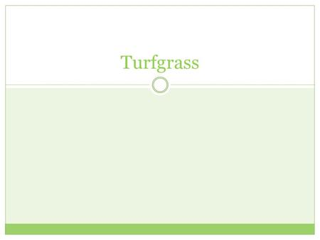 Turfgrass. Establishment Seeding  Least expensive method Sod  Most expensive.