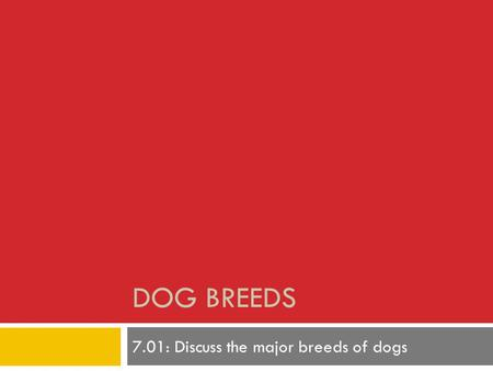 DOG BREEDS 7.01: Discuss the major breeds of dogs.