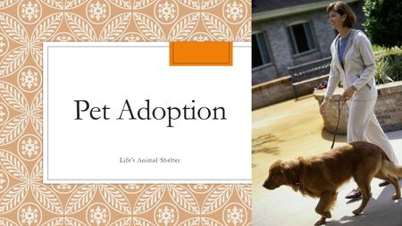 Pet Adoption Life's Animal Shelter. Get a Healthy Pet Save Money Save a Life Get a Socialized Pet Adoption Benefits.