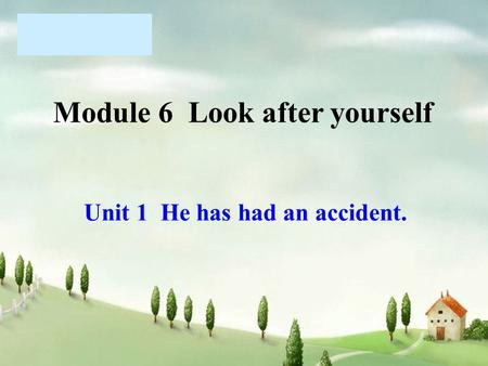 Module 6 Look after yourself Unit 1 He has had an accident.