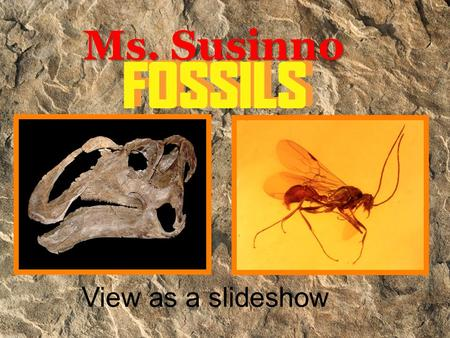 Ms. Susinno View as a slideshow What is a fossil? Fossils give clues about organisms that lived long ago. They help to show that evolution has occurred.