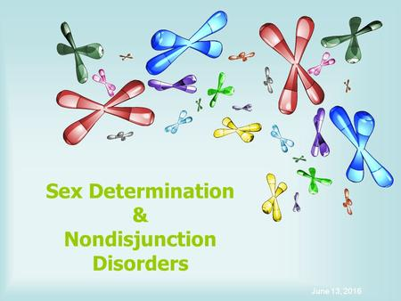 Sex Determination & Nondisjunction Disorders June 13, 2016.