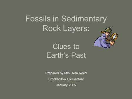 Fossils in Sedimentary Rock Layers: Clues to Earth's Past