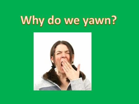 Many parts of the body are in action whenever you yawn. First your mouth opens and your jaw drops allowing as much air as possible to be taken in. When.