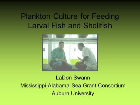Plankton Culture for Feeding Larval Fish and Shellfish LaDon Swann Mississippi-Alabama Sea Grant Consortium Auburn University.
